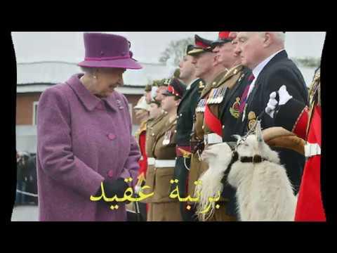 تيس الملكة إليزابيث بــرتبــ ـــة عـــ ــقيــــــ ـــد Youtube