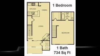 Arcadia at Westheimer Floorplans : 1 Bedroom