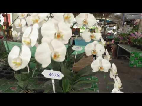 цветочный магазин в Паттайе