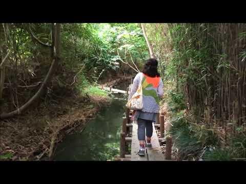 里川のある街/南側用水路プロジェクト<埼玉県杉戸町・幸手町の ...