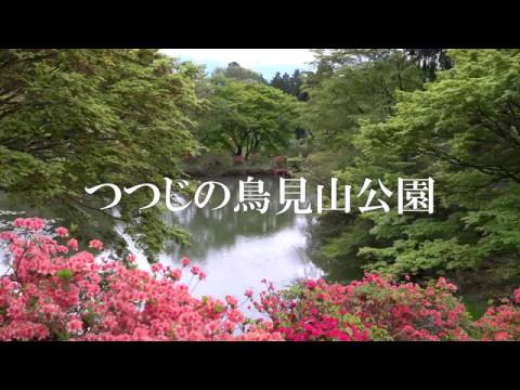 【4K】つつじの鳥見山公園(奈良県宇陀市)