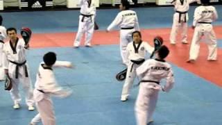 Korean Taekwondo Class