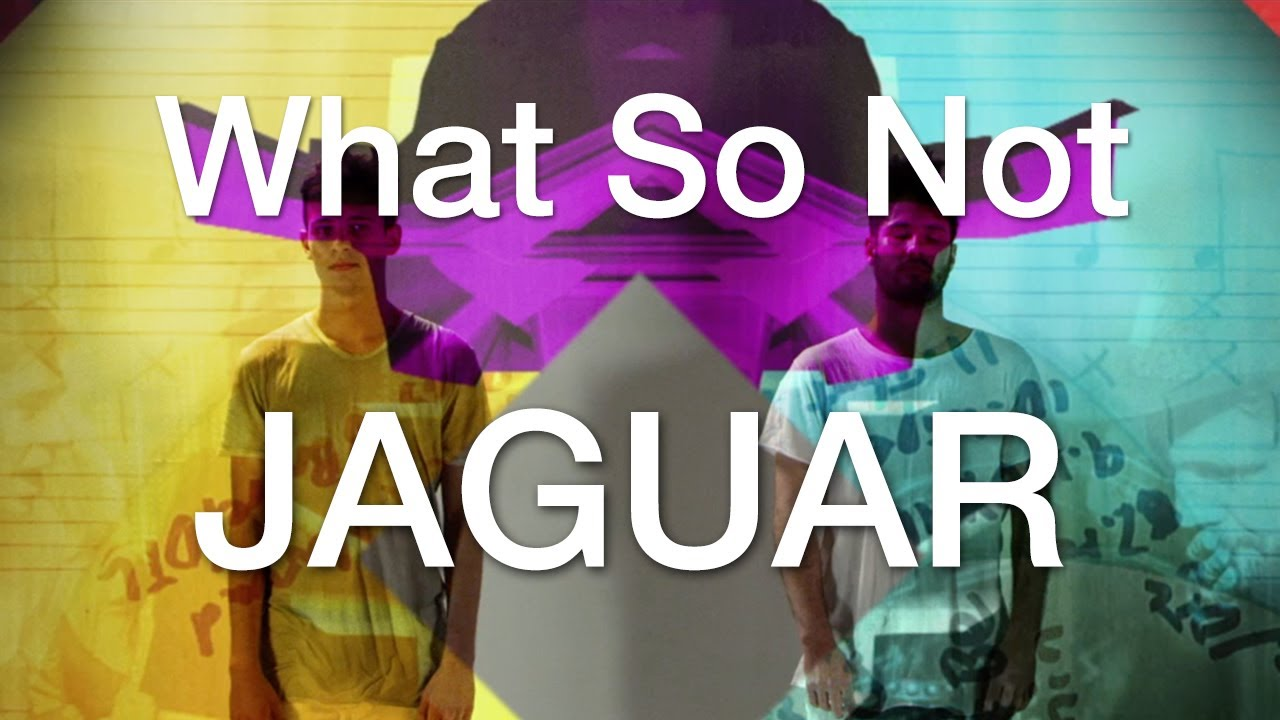 what-so-not-jaguar-official-music-video-thesoundyouneed