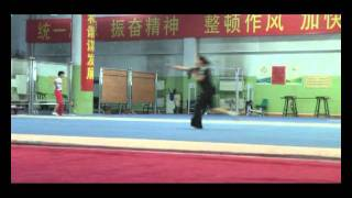 Henan Girls Wushu Team