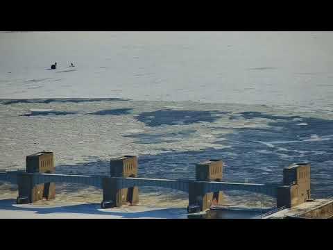 Great Spirit Bluff Falcons - Cliff View Cam 01-17-2018 09:37:56 - 10:37:57