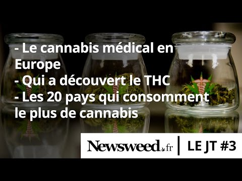 Le JT de Newsweed - #3