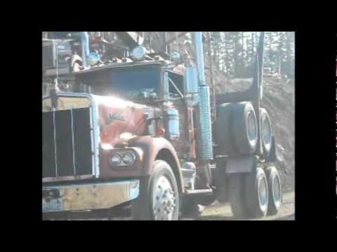 New and old Peterbilt and Kenworth Logging trucks working on VERY steep slopes.
