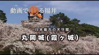 動画で観る福井 日本最古の天守閣「丸岡城(霞ヶ城)」