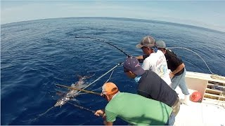 Bigeye and daytime deep drop swordfishing - Northeast Canyons 2015 - Area 51