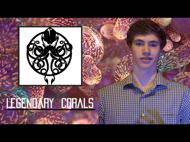 """Internet Corals"" E2- Legendary Corals"
