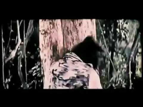 Download LUNG FEI vs YONGKY DP ( best fight in film EXPEDISI HARTA KARUN)