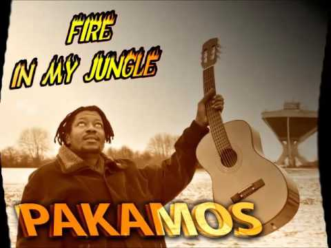 Pakamos -Fire in My Jungle (Gambia Reggae 2016)