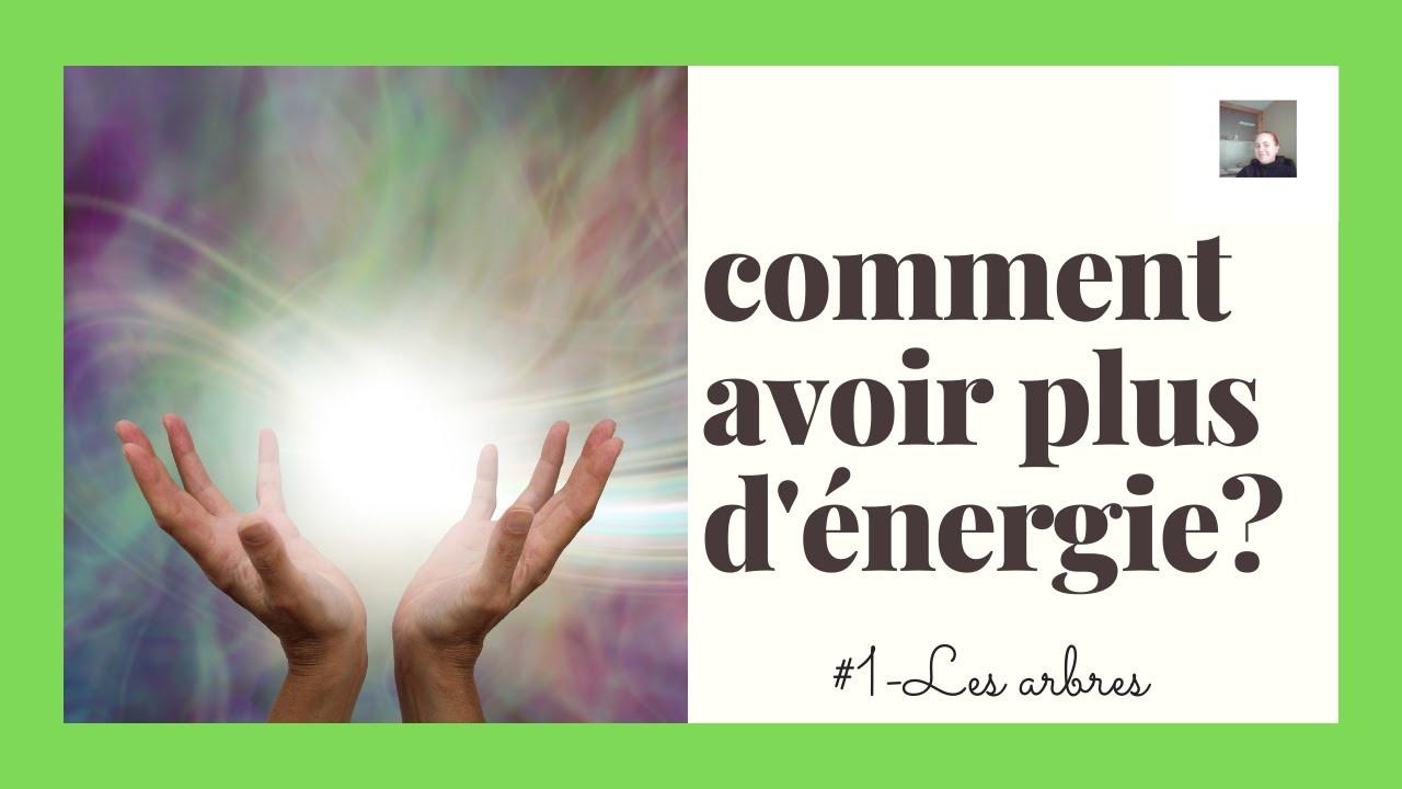 Comment avoir plus d'énergie ? #01 - Les arbres