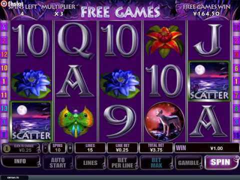 Panther Moon Free Games - Playtech Slot Game