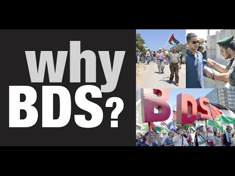 Why BDS?  (Part 1)