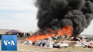 Afghan Authorities Torch Drug Haul