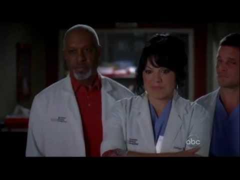 The Physician's Oath ( Grey's Anatomy )