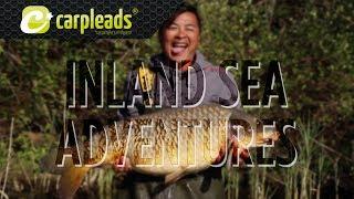 Inland sea adventures – Karpfenangeln mit Tom und Vu in Frankreich – CarpleadsTV