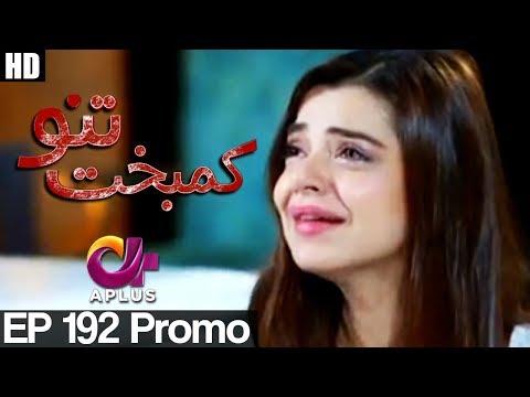 Kambakht Tanno - Episode 192 Promo   A Plus ᴴᴰ Drama   Shabbir Jaan, Tanvir Jamal, Sadaf Ashaan