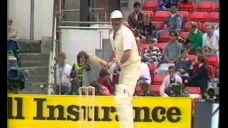 Terry Alderman - Swing Genius vs England 1989