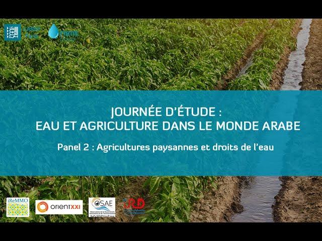 Panel 2 - Agricultures paysannes et droits de l'eau