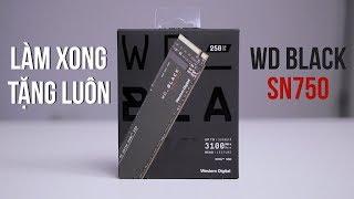 """""""SSD xịn"""" khác gì """"SSD thường""""?"""