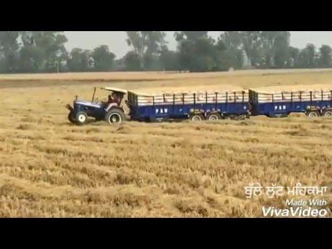 Holland Di Rees Ni Kada Koi Tractor Sira