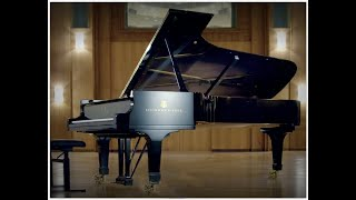 Tchaikovsky Piano Concerto No 1 in B minor Opus 23, 2nd movement