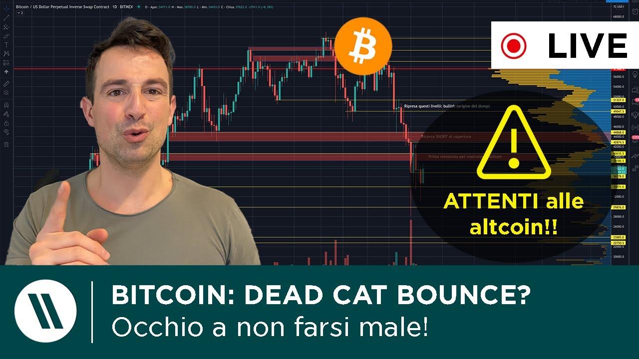 quando finirà il mercato del mercato di crypto bear