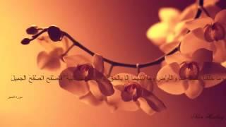 قران كريم صوت جميل وهادا يريح القلب