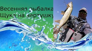Весенняя рыбалка щука на вертушку
