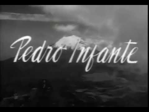 Ver La Vida no Vale Nada en Español