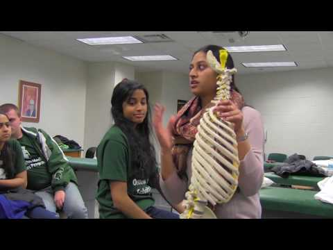 Osteopathic Medical Scholar's Program-Michigan State University