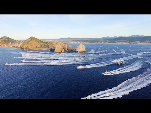The Super Bowl Of Sport Fishing – Bisbee's Black & Blue Marlin Tournament