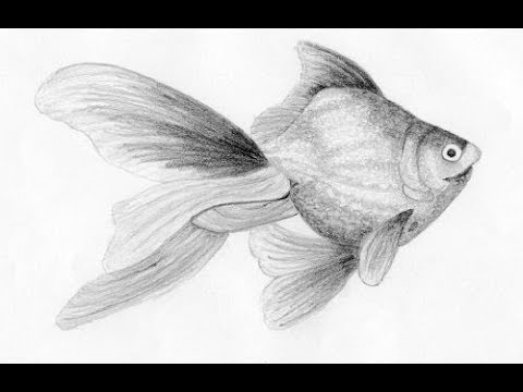 Midnight oil productions | pencil drawing tutorial.