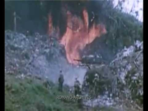 Nothing like peleliu quot from the film peleliu 1944 horror in the