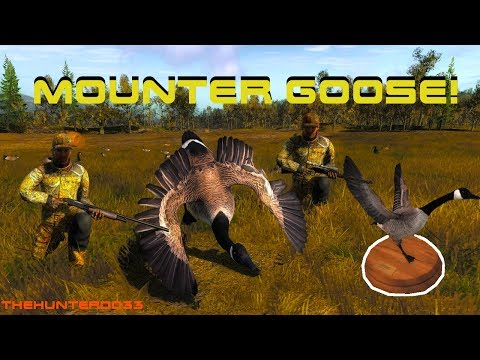 Finding WALL HANGERS 23!! Canada Goose  THEHUNTER 2017