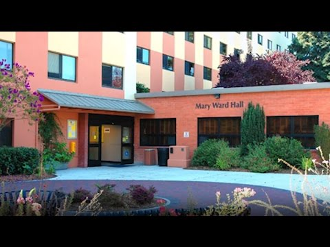 San Francisco State University Five Things I Wish Knew Before Attending You