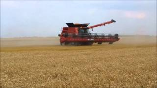 new combine case ih 9240 coupe 12 50m