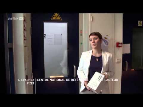 ARTE Reportage Ebola: Das Rennen gegen den Tod