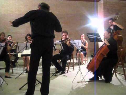 Merate musica orchestra1