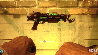 black ops 2 ray gun mark 2 every time glitch