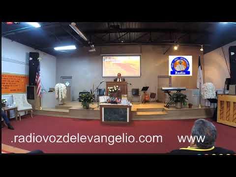 radio Voz del Evangelio Live Stream