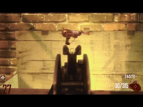 Black Ops 2 Ray Gun EVERY TIME GLITCH!