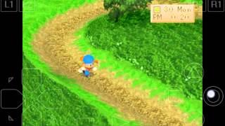 Tempat Rahasia Atau Misteri Di Dalam Game - Harvest Moon Back Nature Indonesia