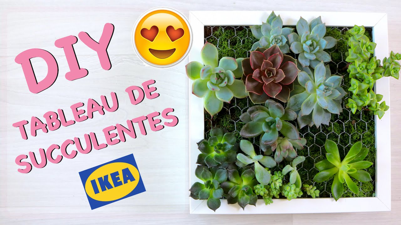 diy comment cr er un tableau de succulentes cadre v g tal avec plantes grasses made in ikea. Black Bedroom Furniture Sets. Home Design Ideas