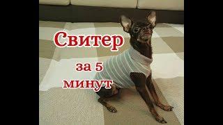 Свитер для собаки и кошки за 5 минут