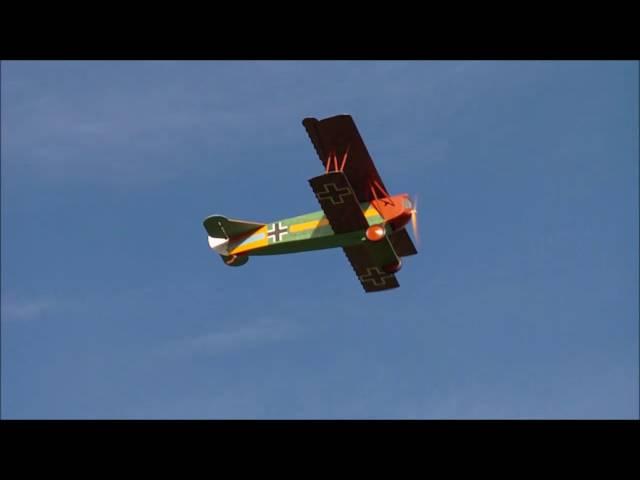Balsa USA 3rd Scale Fokker DVII