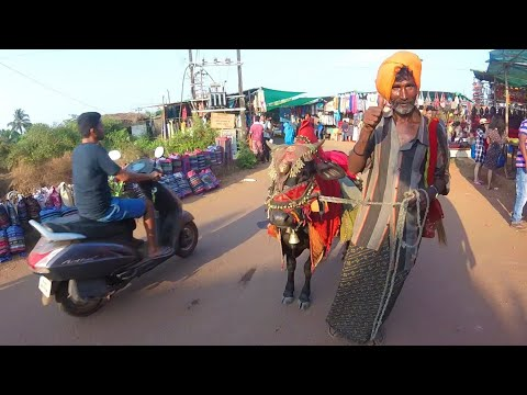 Six Weeks in India: An Incredible Journey [Full Movie]