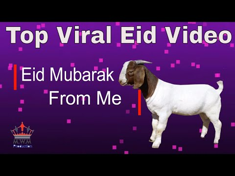 Eid Mubarak Video in Hd || Eid Wishes Video || عید الاضحیٰ || Eid-Ul-Azha Mubarak Video HD